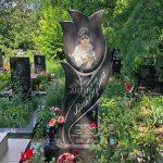 Памятник фотография (233)