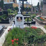 Памятник фотография (254)